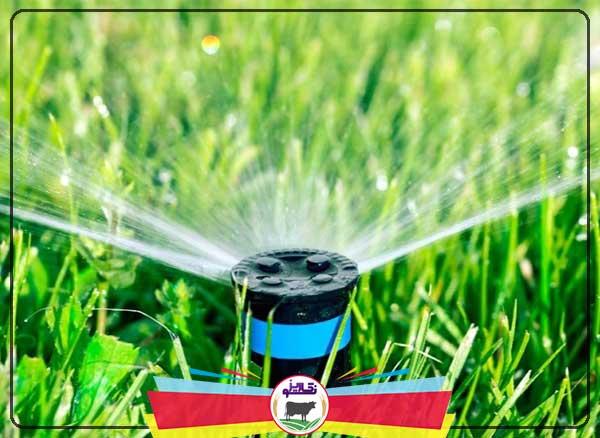 مزایا و معایب آبیاری تحت فشار و آبیاری کم فشار